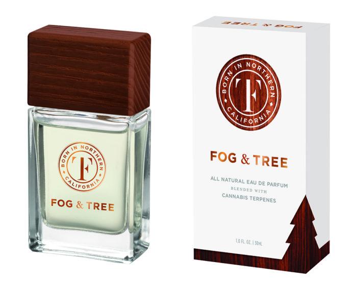 Fog & Tree-CBD products-CBDToday