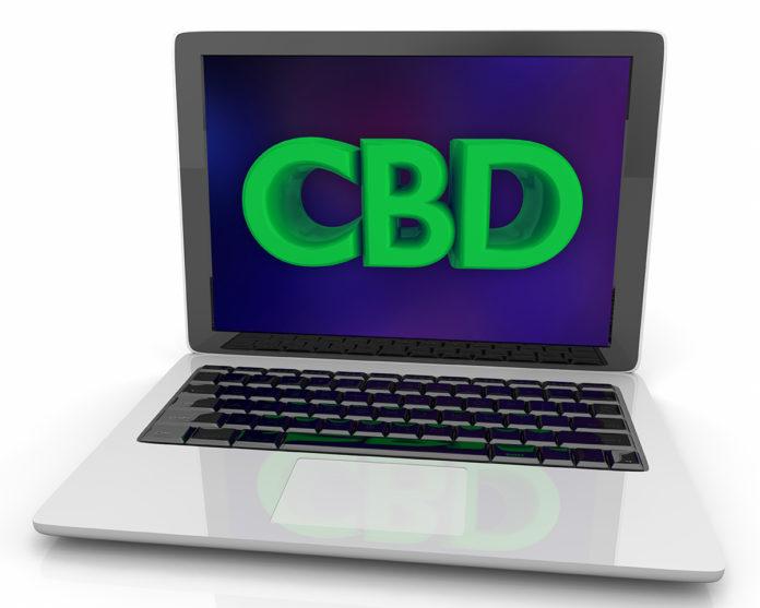CBD Google searches-JAMA-study-cbdtoday
