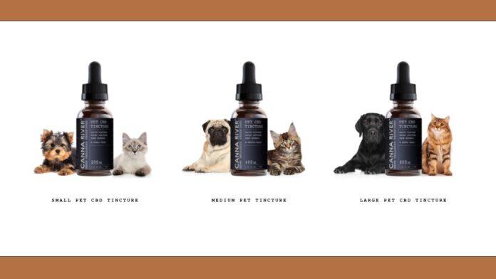 Canna River Pet Tincture-CBD products-Pet products-CBDToday