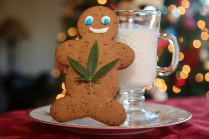 Stay Chill with Gift-Worthy CBD Products This Holiday Season-CBD products-CBDToday