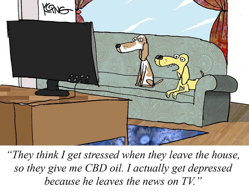 Jerry-King-cartoonist-February-2021-hemp-cartoon-CBD-CBDToday