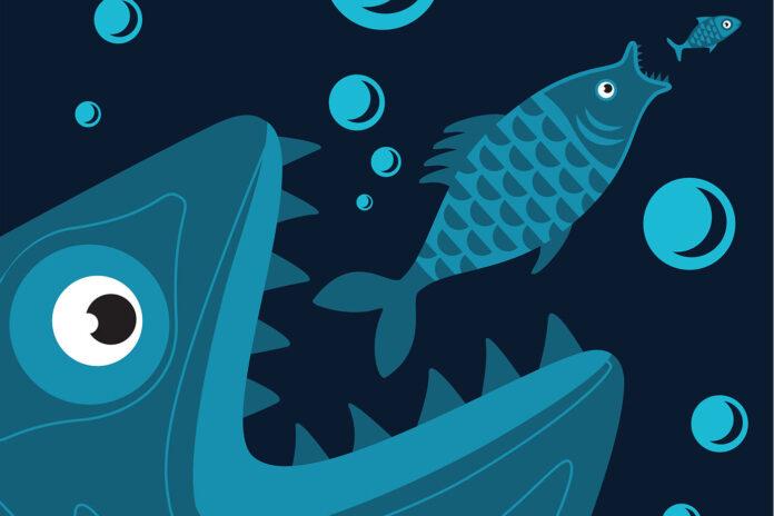 industry consolitation big fish Iconic Bestiary CBD Today